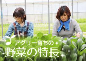 アグリー農園のお野菜の特長について